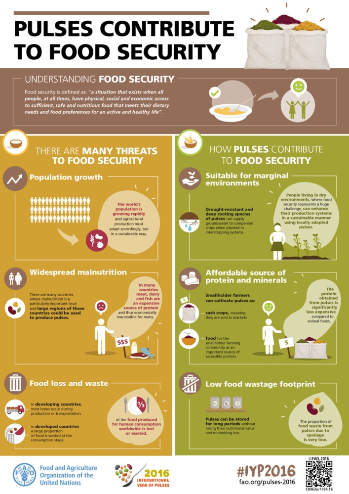 Image result for pulses for sustainable food security